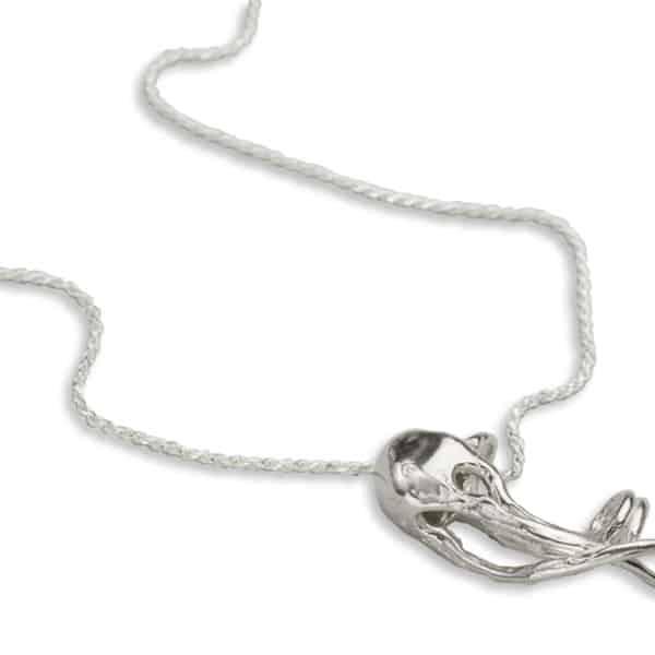 AK box jelly long necklace