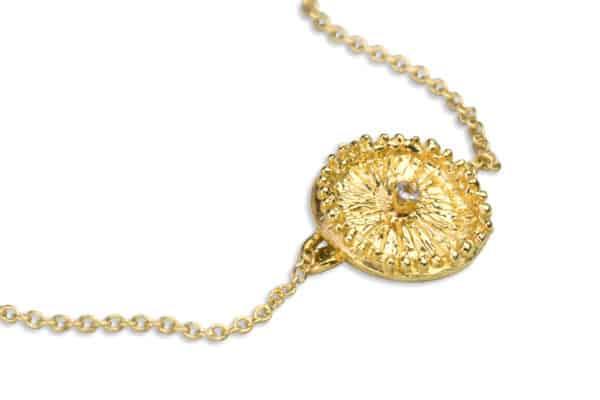 AK zoanthid solo gold tanzanite closeup