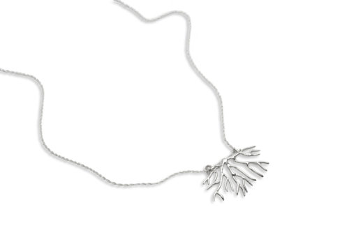 bryozoan necklace