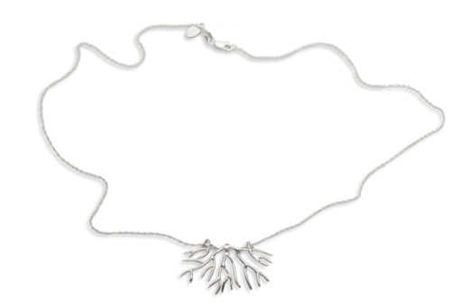 bryozoan necklace whole