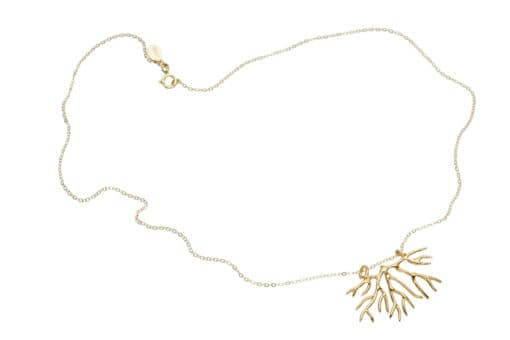 Bryozoan necklace, gold whole